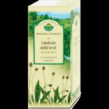 HERBÁRIA Lándzsás útifű tea 1,5g (25x)