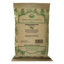 HERBÁRIA Galagonyatermés tea 40g